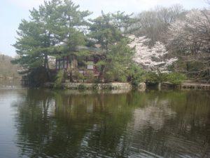 練馬区石神井公園画像